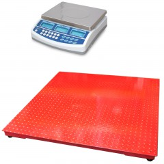 CSG BCD DUAL SCALE REMOTE PLATFORM COUNTING SYSTEM | countyscales.co.uk
